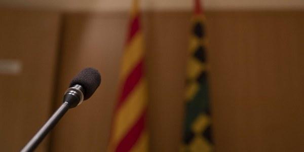 Ple ordinari del Consell Comarcal del Pla d'Urgell