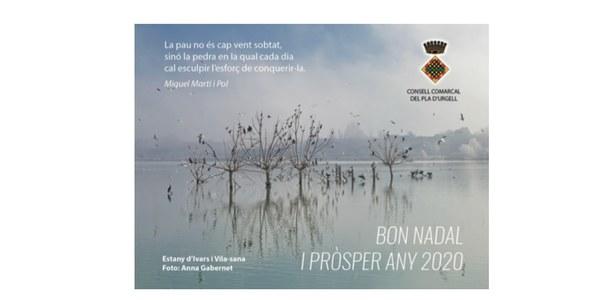 Bon Nadal i pròsper any 2020