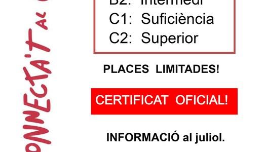 Des del Servei Comarcal de Català del Pla d'Urgell s'ofereixen cursos de català presencials i en línia