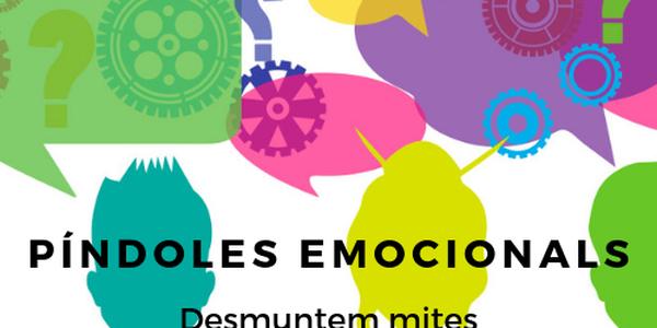 Cartell de la proposta de l'Oficina Jove del Pla d'Urgell