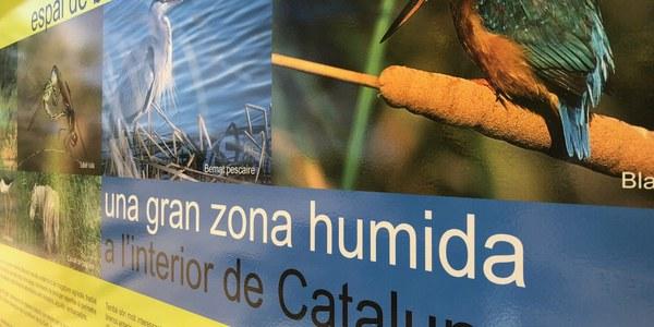 Foto: Senyalització de l'Estany d'Ivars i Vila-sana