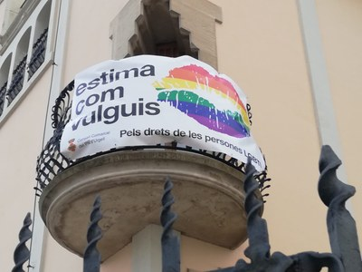 Dia Internacional contra l'homofòbia