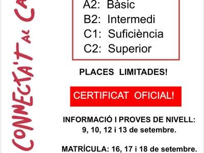 Nous cursos de català