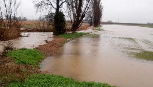 """Remeten les conseqüències del temporal """"Gloria"""" al Pla d'Urgell"""