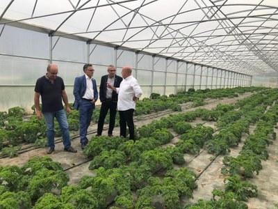 Teresa Carles Healthy Food i la nova planta al Pla d'Urgell