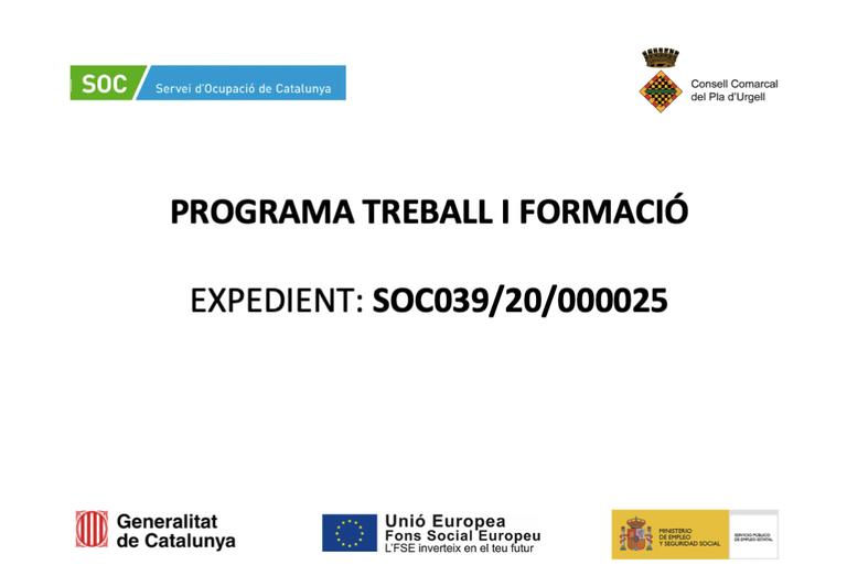 TREBALL I FORMACIOì.png